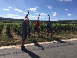 Région Grand Est : Sensibilisation aux échauffements avec les viticulteurs a quelques semaines des vendanges