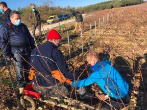 Région Grand Est : trois jours avec les vignerons du Champagne Taittinger pour améliorer l'utilisation du corps au quotidien